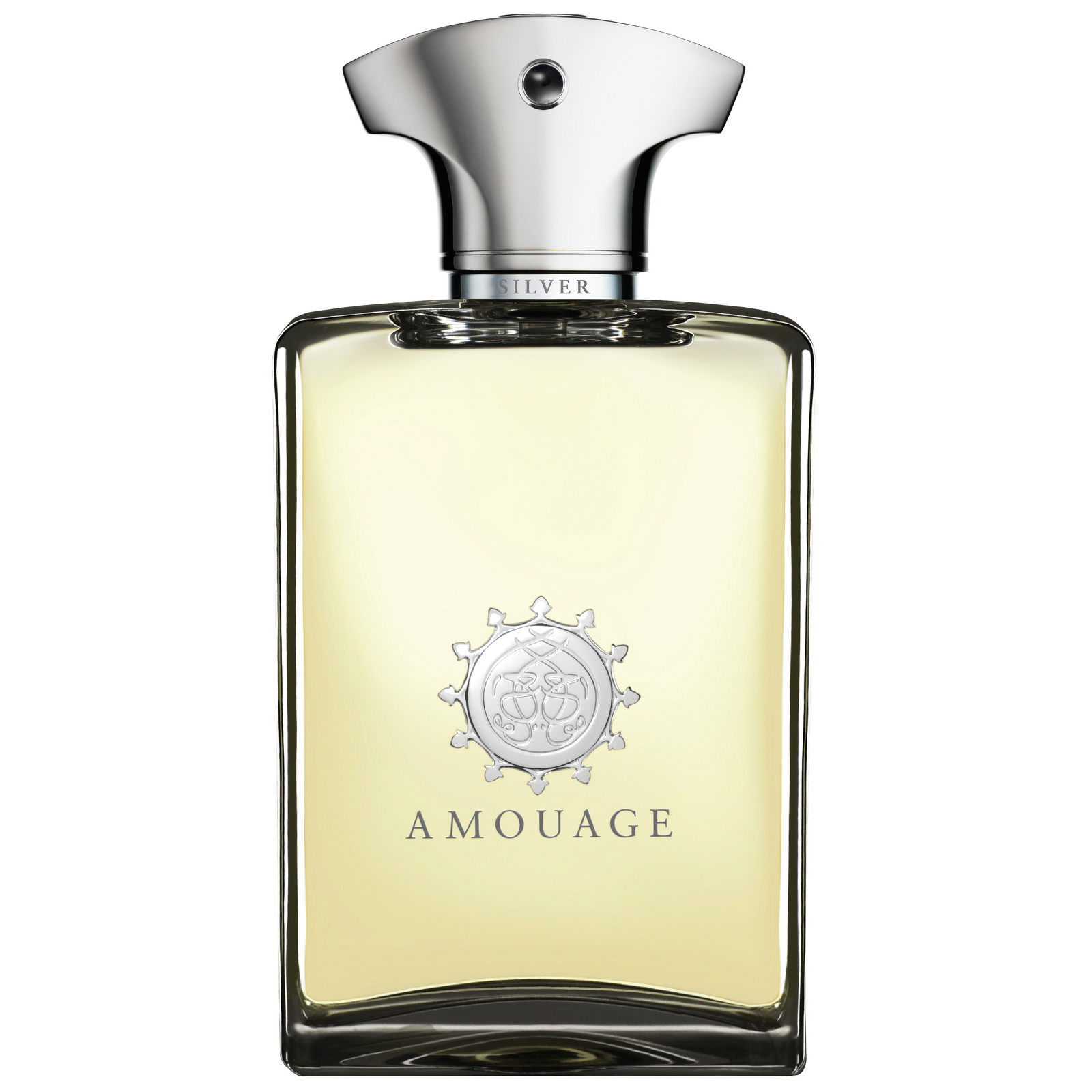 0c1baaea9 Amouage Silver - Eau De Perfum for Men 100 ml